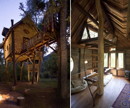 Casele in copaci, un vis al copilariei in mijlocul naturii!