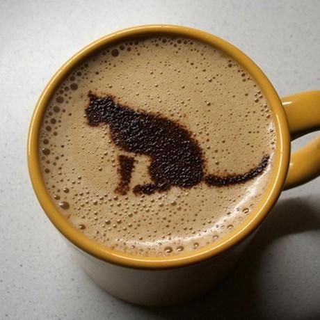 Cafea cu parfum de... pisica?