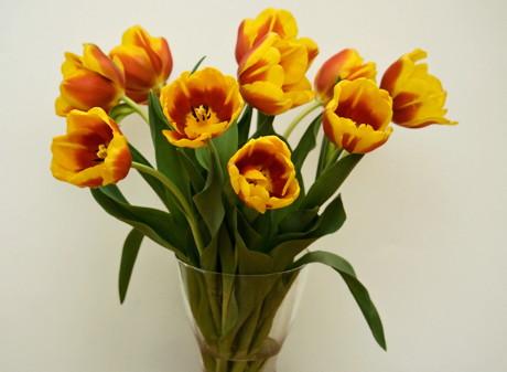 Cum poti ingriji florile ca sa reziste mai mult timp